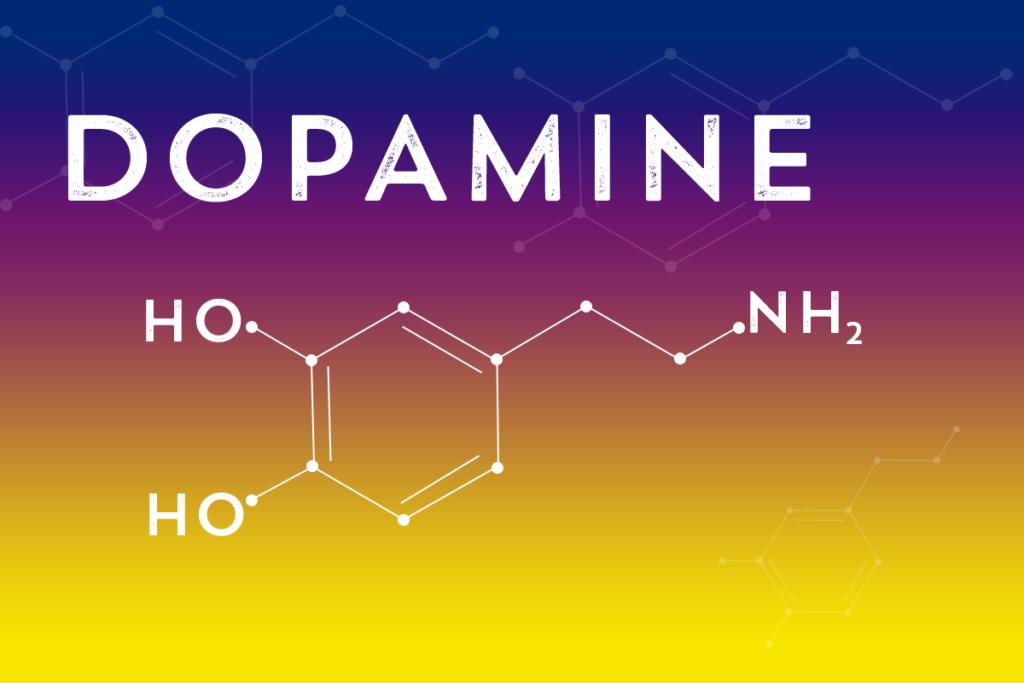 Dopamine 1